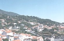 Vista Geral da Vila do Carvalho