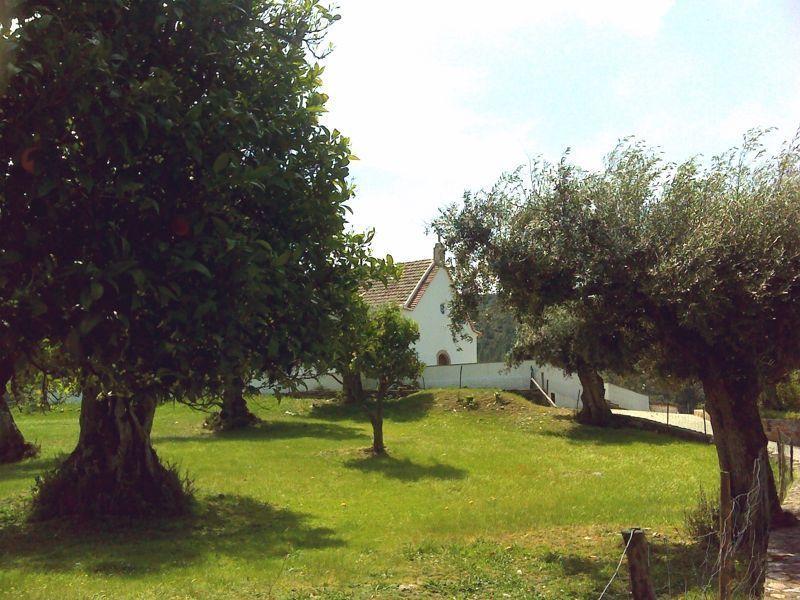 Capela da Senhora da Alagada e as oliveiras