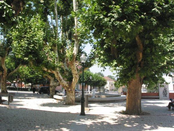 Jardim no centro da vila