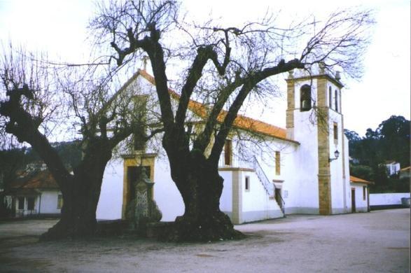 Igreja de S. Martinho da Cortiça
