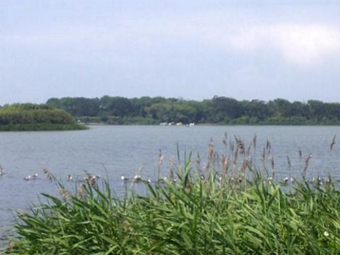 Lagoa de Mira - Barrinha para relaxar