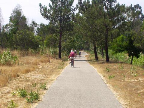 Lagoa de Mira - Passear de bicicleta