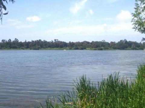 Lagoa de Mira - Lagoa para relaxar