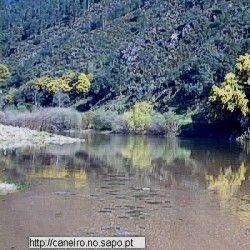 Caneiro - rio