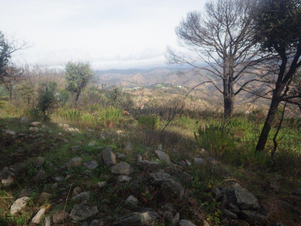 Ruinas do Castelo do Alferce