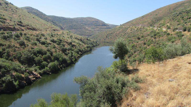 Ponte sobre o rio Côa e paisagem