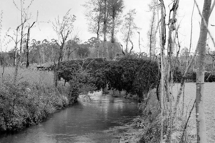 Ponte da Veiga em 1962