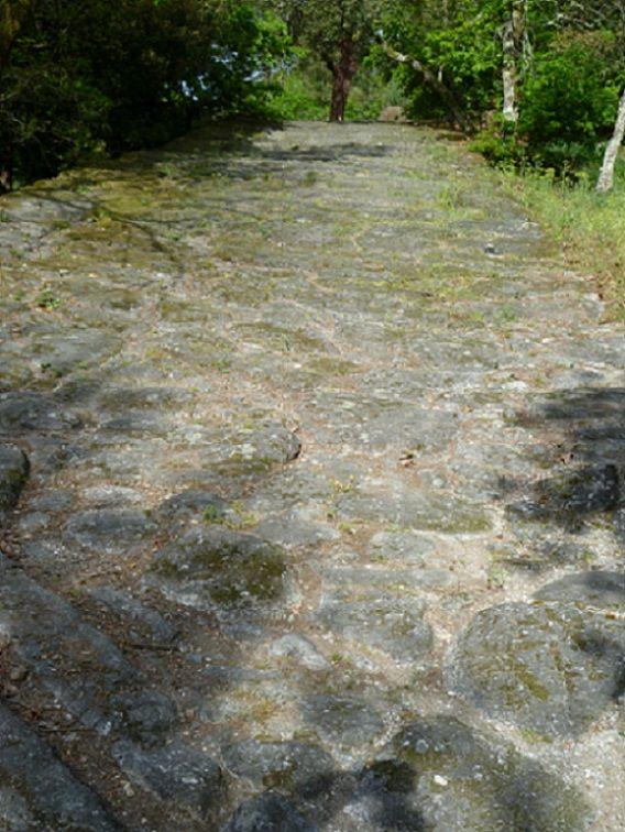 Via Romana de Lanhoso