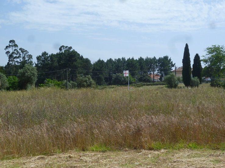 Campo Militar de S. Jorge